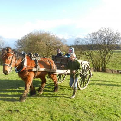 Un cheval et sa charette