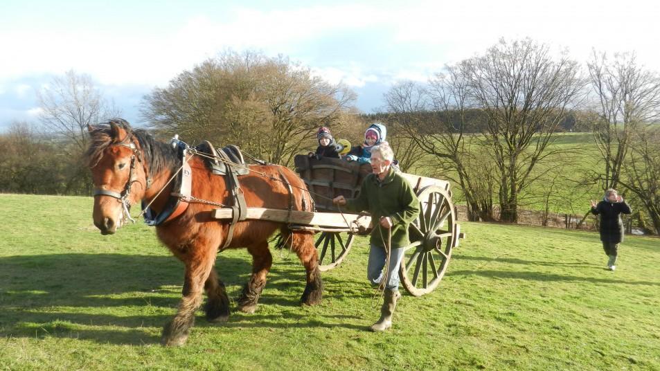 un cheval qui tire une charrette