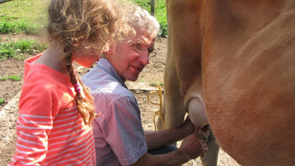 une homme qui trait une vache avec une jeune fille
