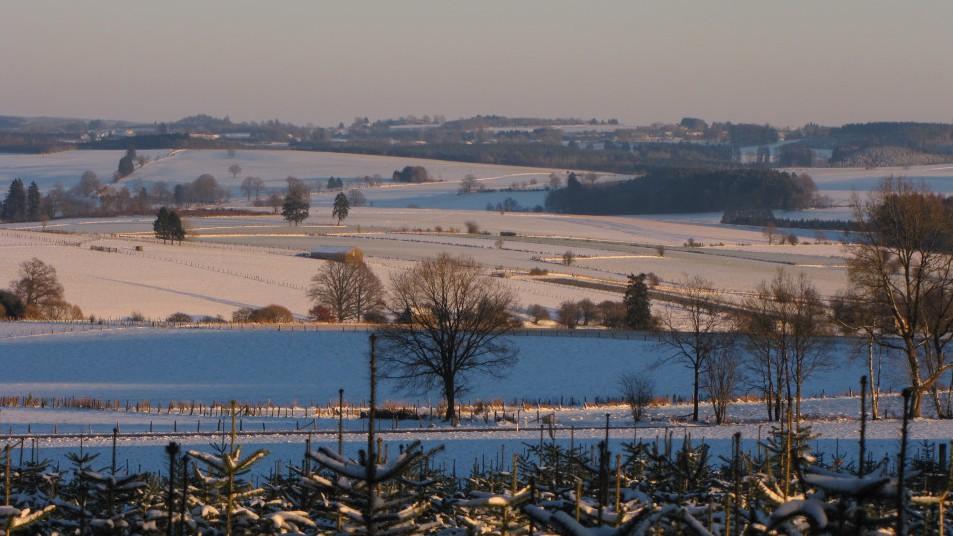 paysage de prairies sous la neige