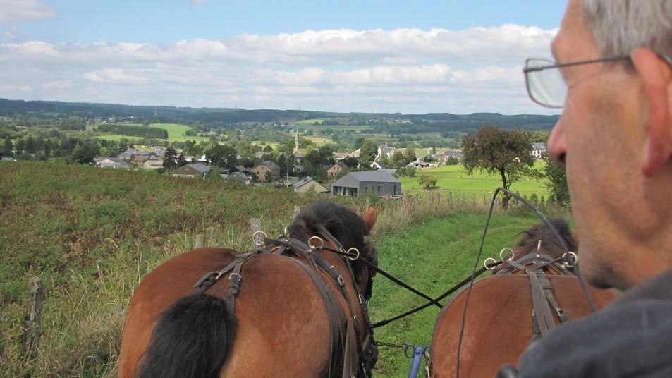 un homme, et deux chevaux