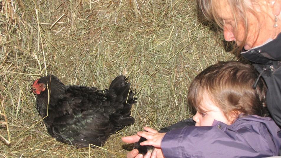 une poule, une femme et un enfant