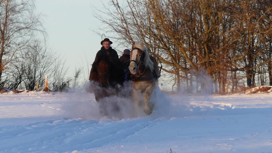 un homme dans sa charrette tirée par deux chevaux, dans la neige